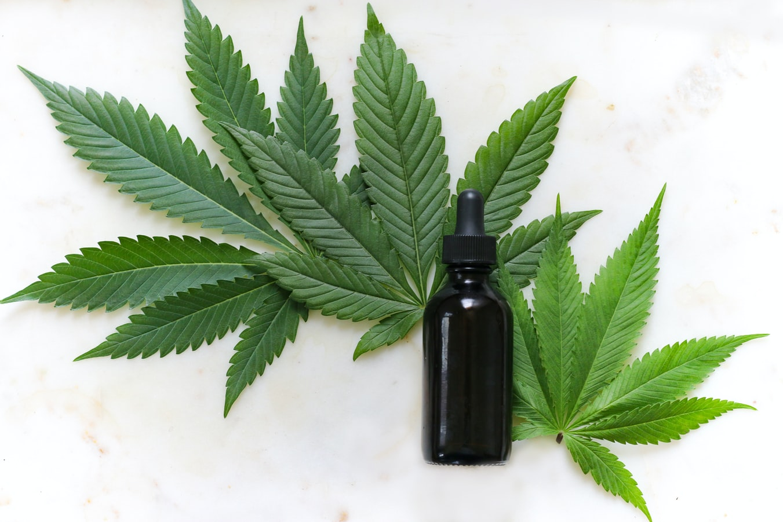 Cannabis medicinal, desde los cultivos caseros autoflorecientes hasta los medicamentos más aceptados de la industria